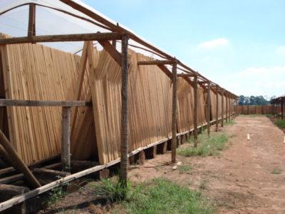 Serraria Mangaba usa coberturas plásticas para secar madeira